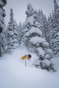 Powder skiing at Steamboat Resort