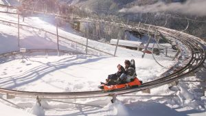 Outlaw, Mountain Coaster, Steamboat Springs, Colorado, Kids, Activity, Children, Fun