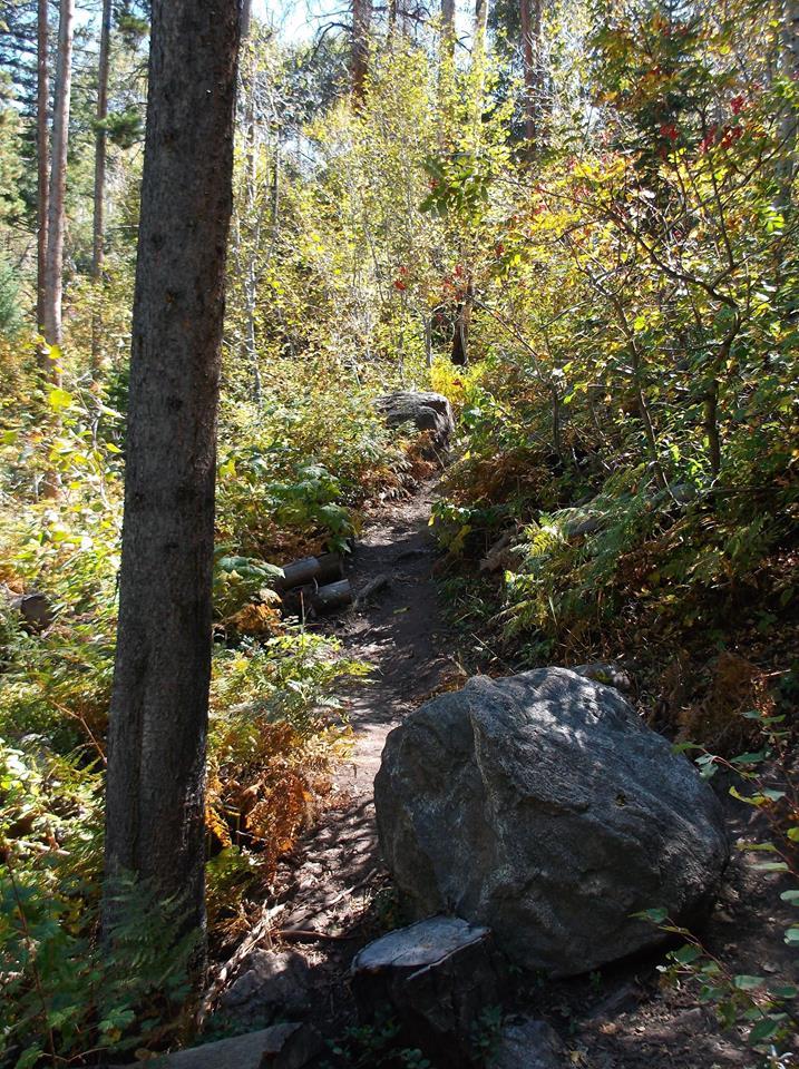 Hiking Thunderhead Peak
