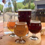 beer, pint, growler, crowler, craft beer, brewery, microbrew, steamboat, colorado, ski town usa, tap room, biketown usa
